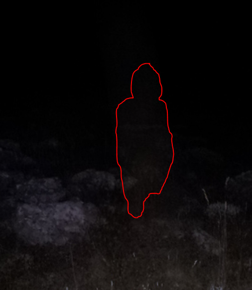 Capture_BDG_ZOMM_X2_contoure_silhouette.PNG